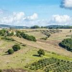 Landscape Tuscany near Volterra — Stock Photo