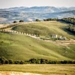 Typical Tuscany Landscape — Stock Photo
