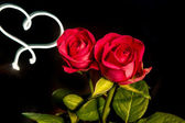 Roses with light heart — Stock Photo