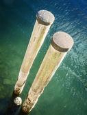 Wooden pole — Stock Photo