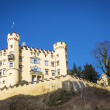 Stock Photo: Castle Hohenschwangau