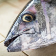 Fresh fish — Stock Photo #44493199