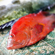 Fresh fish — Stock Photo #44730681