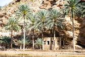Wadi Shab Oman — Stockfoto