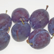 Plums — Stock Photo #13283126