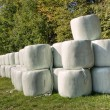 Hay bales — Stock Photo #13311862