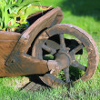 Wheelbarrow in the garden — Stock Photo
