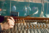 Play the dulcimer — Стоковое фото