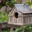 Hanging bird house — Stockfoto