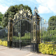 Majestic gate — Stock Photo #26472757