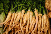 Parsley roots laid for sale — Stockfoto
