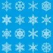Snowflakes — Stock Vector #13769501