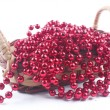 Stock Photo: New Year's beads