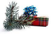 Branche d'un sapin et cadeaux — Photo