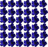 Achtergrond van violette bloemen — Stockfoto