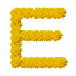 The alphabet from flowers — Stock Photo
