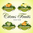 Citrus Fruits. Orange, lemon, green lime, mandarin — Stock Vector