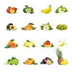 Постер, плакат: Fruits Vector