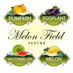Melon, watermelon, pumpkin, eggplant. Vector — Stock Vector #13516022