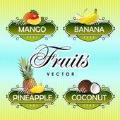 Vruchten. vector. — Stockvector