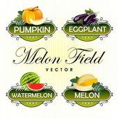 Melon, watermelon, pumpkin, eggplant. Vector — Stock Vector