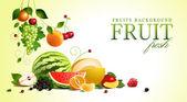 Assorted fruit. vector — Stock Vector