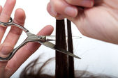 Women cutting hair — Stock Photo