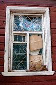 Abandoned life — Stock Photo