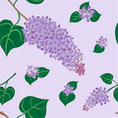 Lilac bush — Stock Vector