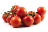 Big Tomato Vine — Stock Photo