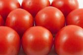 Tomato Wallpaper — Stock Photo