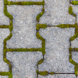 Stock Photo: Cobblestone with moss.