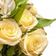 Stock Photo: Roses isolated