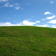 Stock Photo: Grassy hill