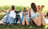 Girl lying on the grass with a dog — Stock Photo