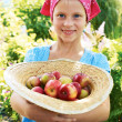 Vegetable garden - lovely gardener with apples — Stock Photo #51792565