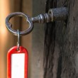 Key in lock with keyring — Stock Photo