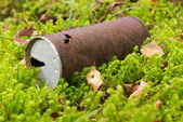 Old Can, rusty beverage can in the forest — Stock Photo