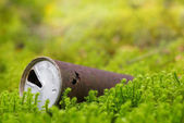 Old rusty beer can in nature — Stock Photo