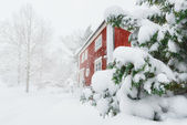 Red house in snowfall — Stock Photo