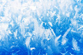 Frost background, closeup — Stock Photo