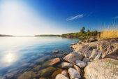 береговая линия с валунами и деревья — Стоковое фото