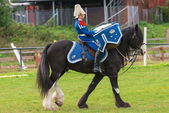 STOCKHOLM - SEP, 22: Tor the Drumhorse passing by at the arena at the The Mounted Guard event for the public in Ryttarstadion Sep 22, 2013 in Stockholm, Sweden — Stock Photo