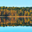 Autumn colors at a lake with reflections - Panorama — Stock Photo