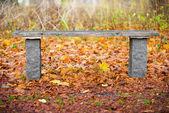Park bench in autumn — Stock Photo