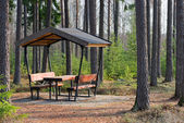 Rest area in the forest besides the highway — Foto Stock