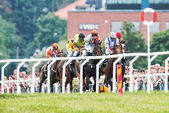 Group of jockeys fight to take the lead into the last curve — Stock Photo