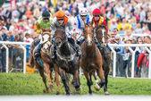 Jockeys into last curve at the Nationaldags Galoppen at Gardet — Stock Photo