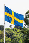 Swedish flag waving in forest — Stock Photo