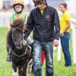 Постер, плакат: Pony racer warming up with her trainer and horse before the star